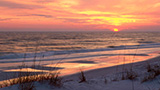 Beaches_t_orange_beach
