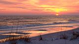 Beaches_t_orange_beach