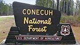 Places-conecuh-national-forest