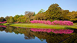 Places-mobile-bellingrath-gardens