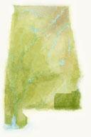 The-wiregrass