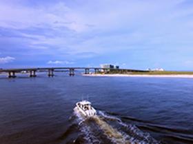 Cultural Renaissance In Gulf Coast