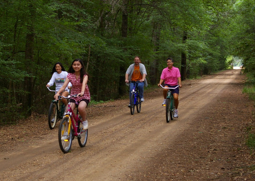 Slide_cahawba_bicycles_on_oak_st