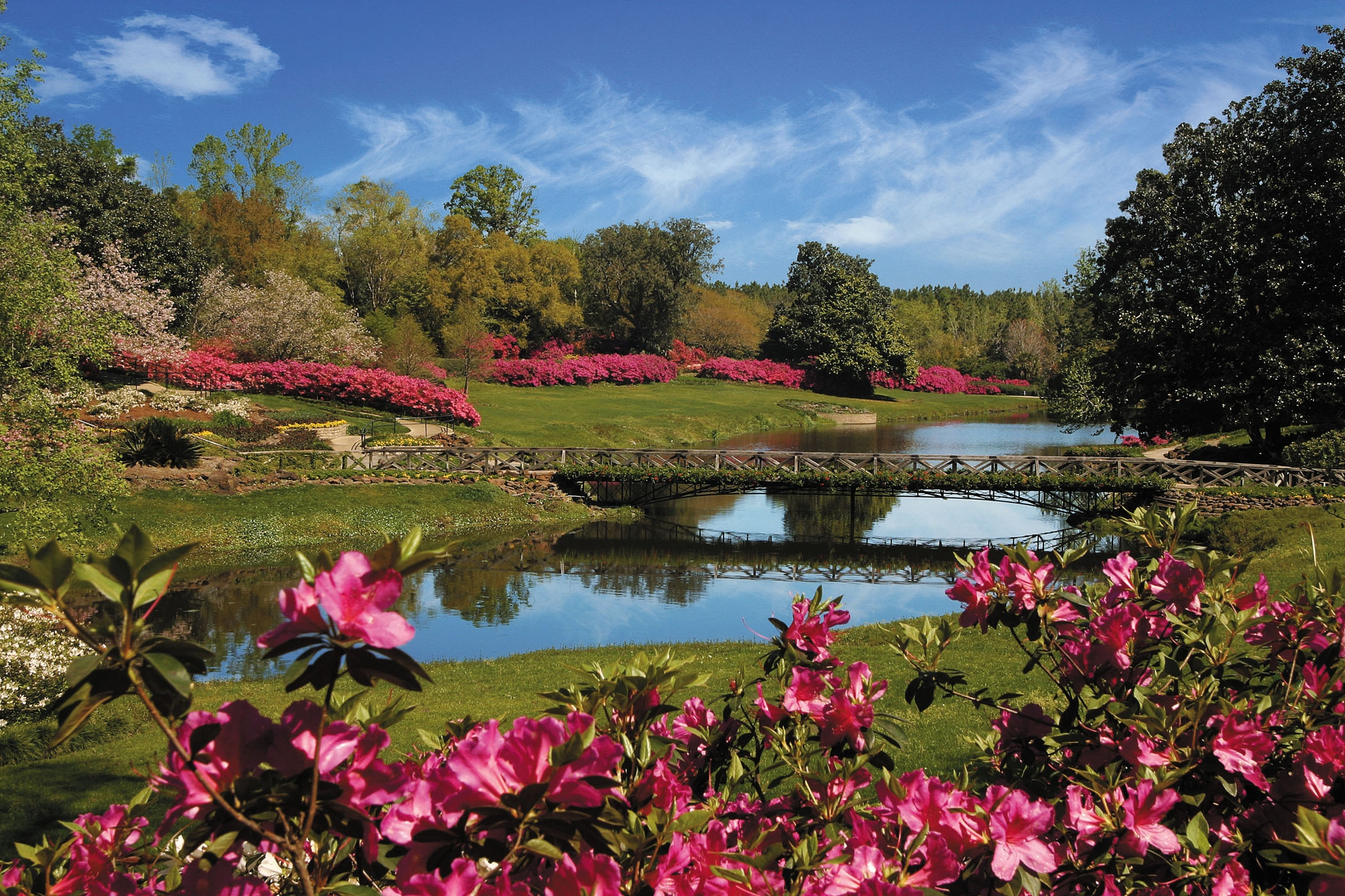 Azalea Bloom Out at Bellingrath Gardens and Home