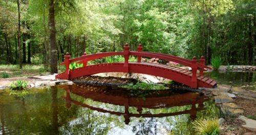 Slide_botanical_gardens1