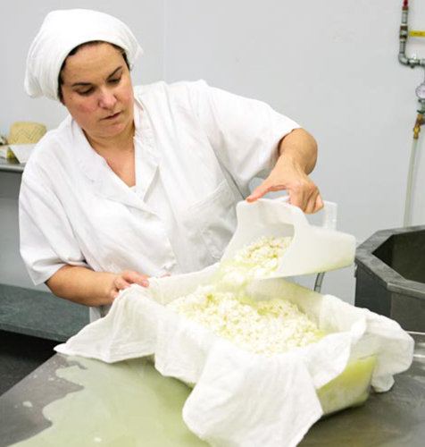 Slide_dayspring_cheesemaker