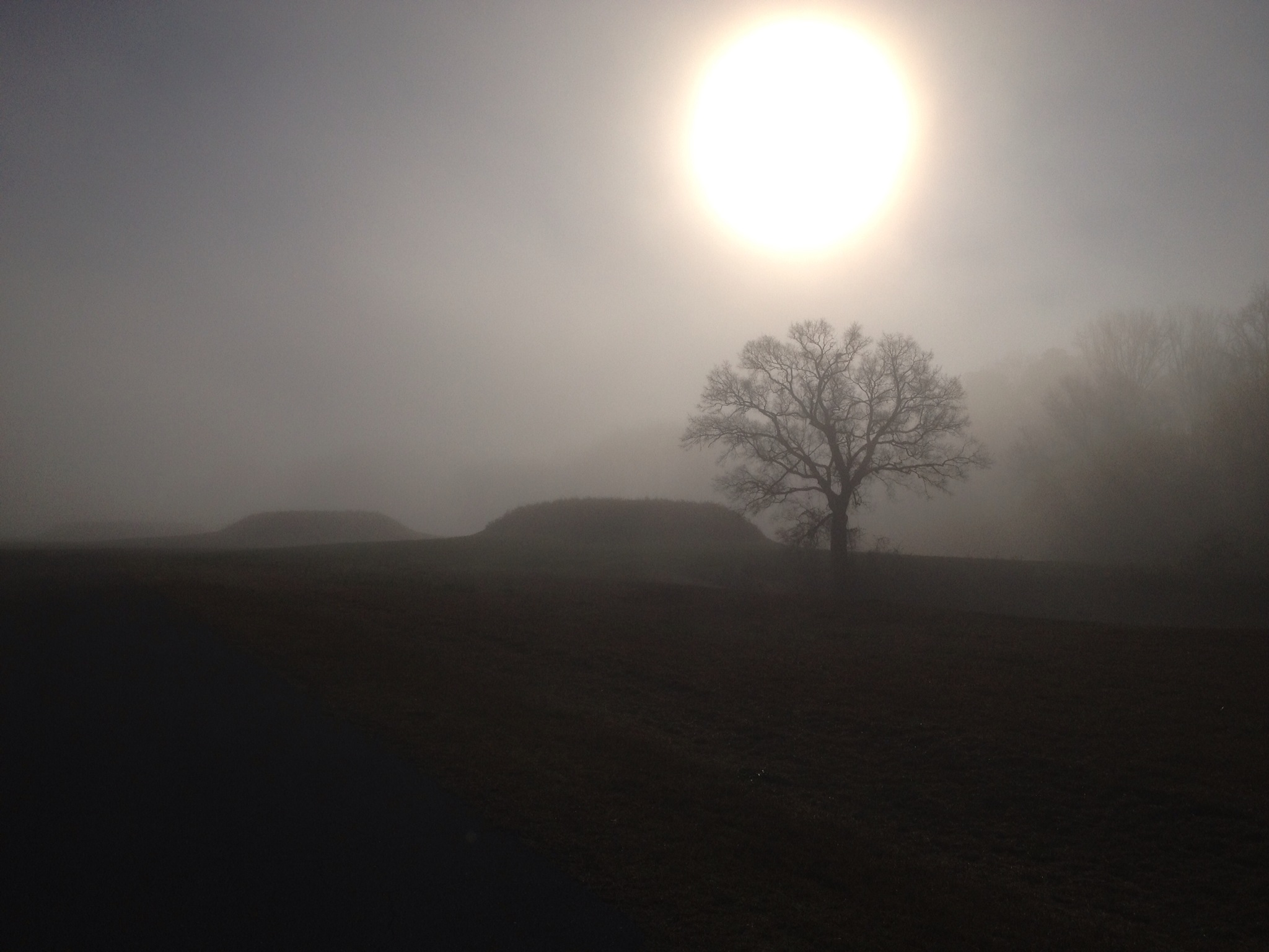 https://alabama-travel.s3.amazonaws.com/partners-uploads/photo/image/57869e624771c955d40000b9/moundville_on_a_cold_winter_morning_med_res.jpg