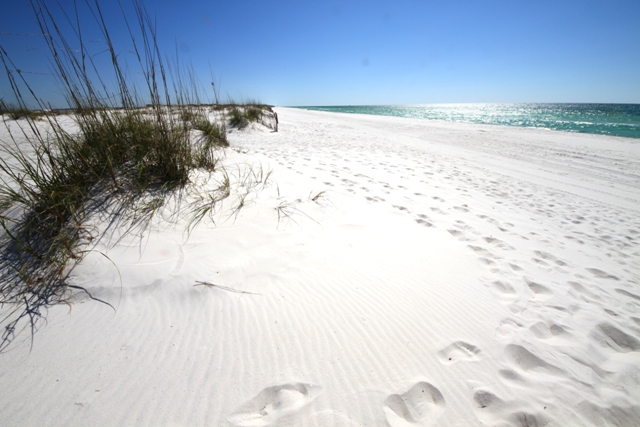 https://alabama-travel.s3.amazonaws.com/partners-uploads/photo/image/5877c048a95d7d8a8c00002b/beach_footprints.jpg