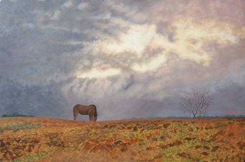 Slide_cindyphillipshorse_pasture_at_peinhardt_farm