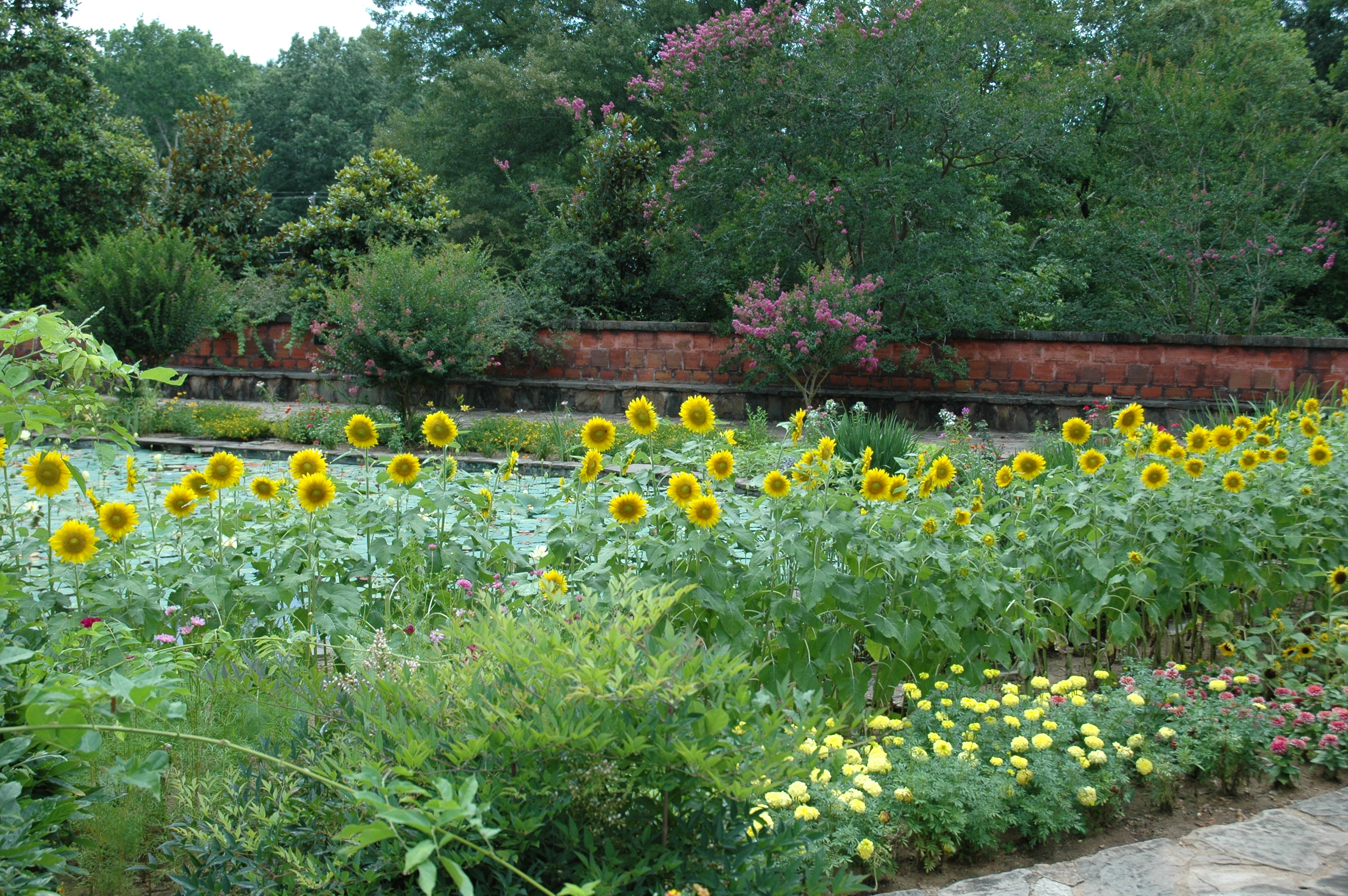 https://alabama-travel.s3.amazonaws.com/partners-uploads/photo/image/5949865e7373907f23000077/lower_pool_with_sunflowers2010.jpg