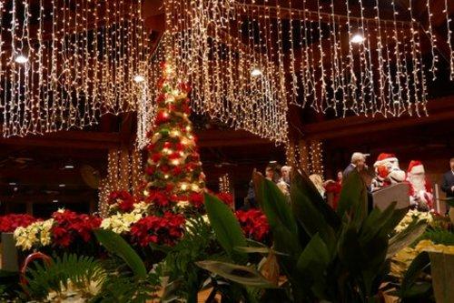 Christmas Lights Festival - Montgomery - Alabama.travel