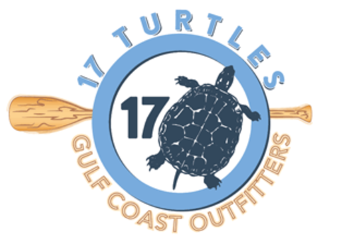 Slide__17_turtles_logo