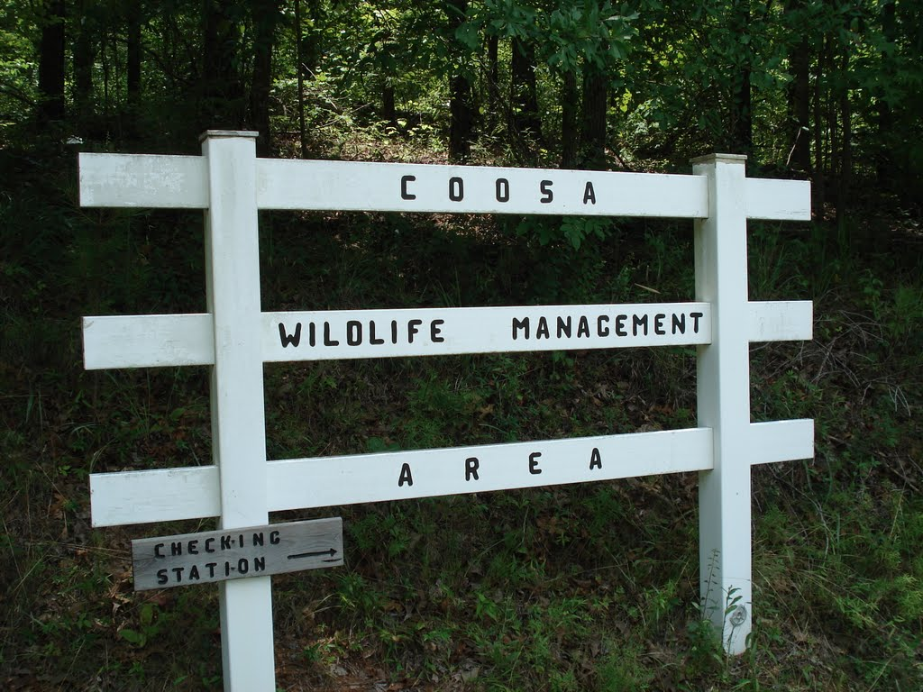 Coosa Wildlife Management Area
