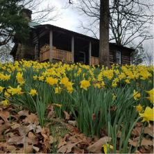 https://alabama-travel.s3.amazonaws.com/partners-uploads/photo/image/59a464491812526725000095/flagg_mtn_coosa.png