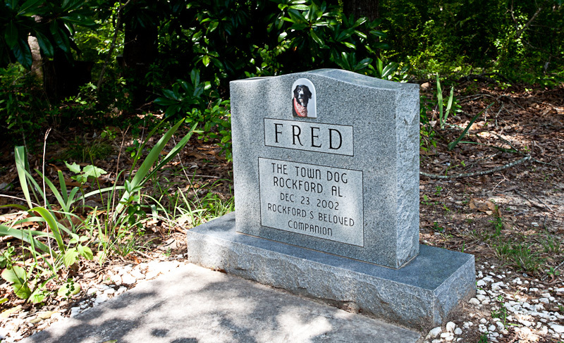 Fred the Town Dog's Grave