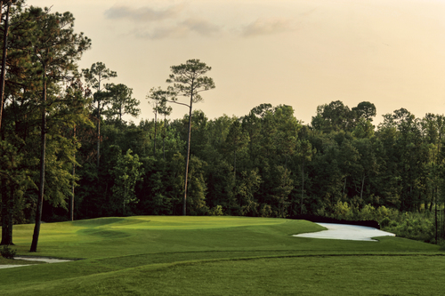 Robert trent jones discount coupons