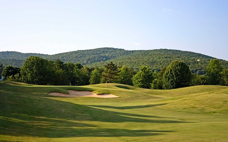 https://alabama-travel.s3.amazonaws.com/partners-uploads/photo/image/5a70f334337d9dc4020000cb/hampton_cove_golf_course_cover_picture.jpg