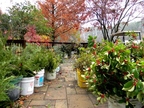 Slide_ag_greenery_sale_patio_1