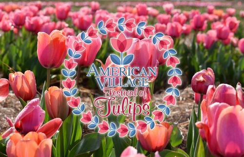 Slide_pink_tulip_slide