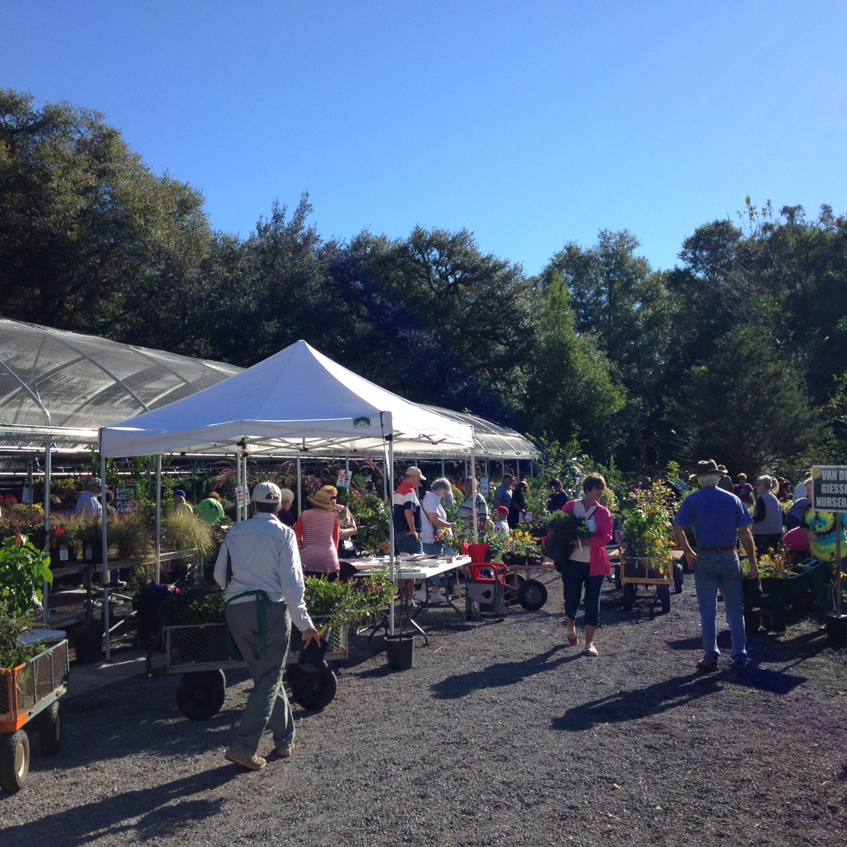 Fall Plant Sale