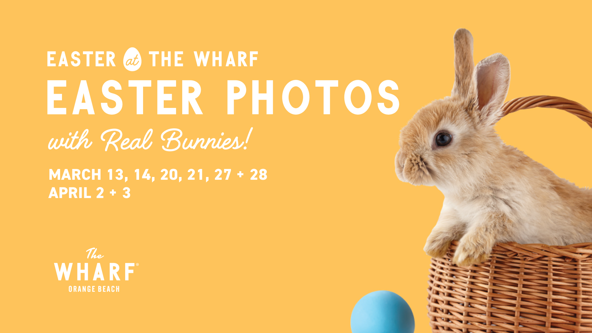 Easter Photos at The Wharf