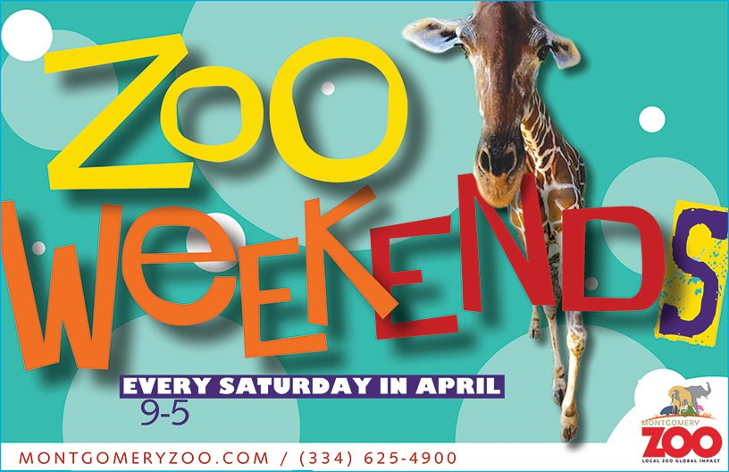 Zoo Weekend