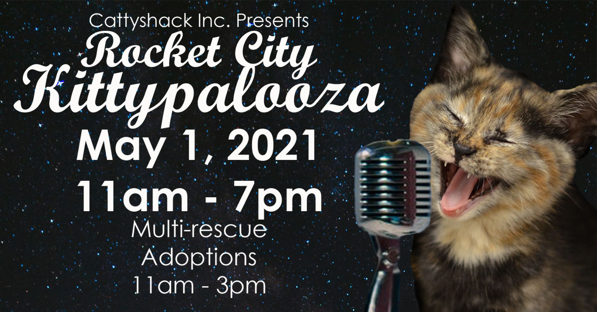 Rocket City Kittypalooza