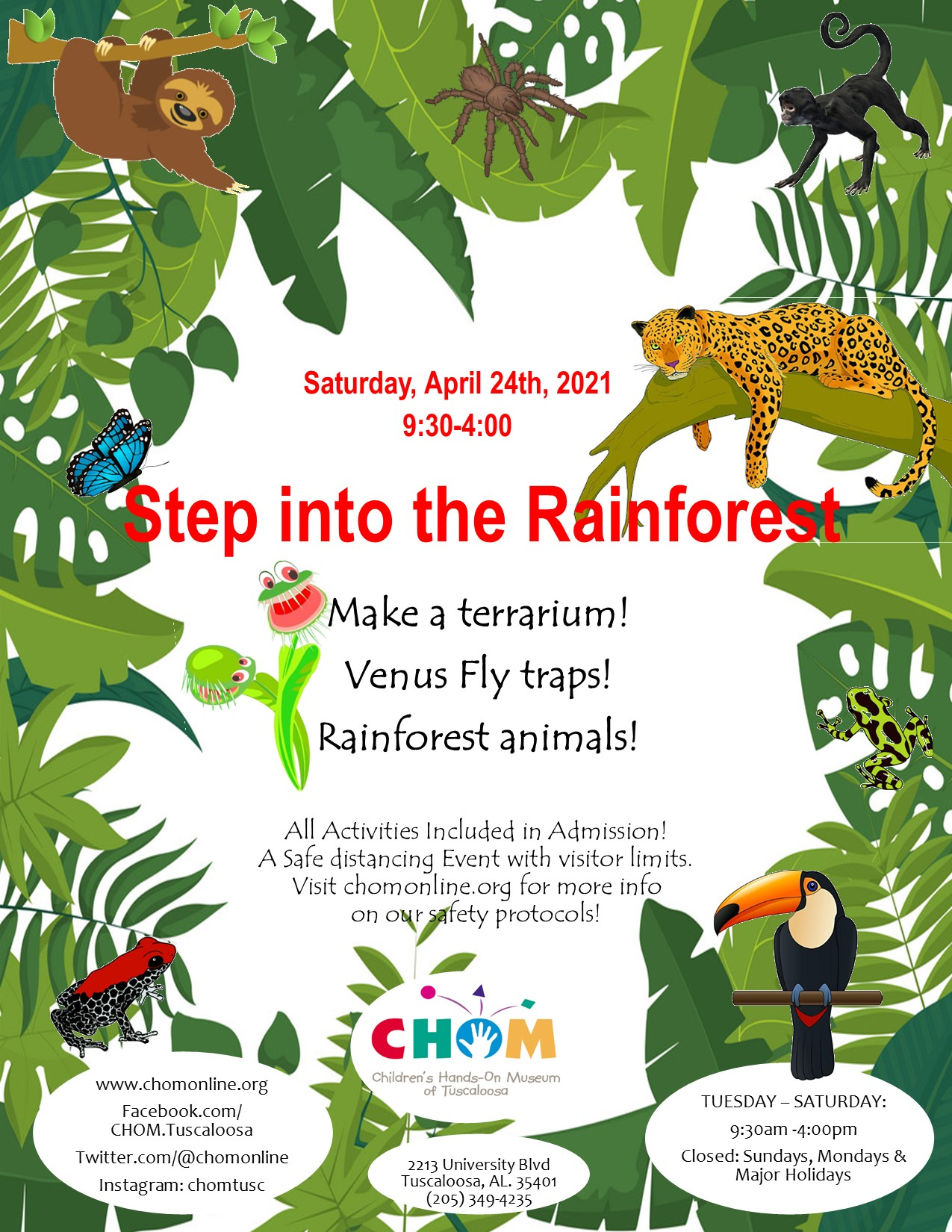 Step into the Rainforest at CHOM!