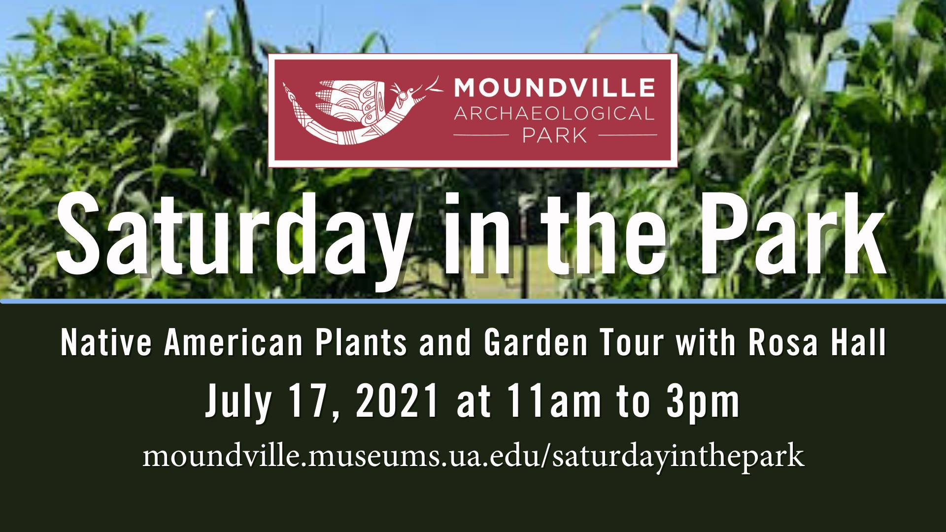 Saturday in the Park: Native American Plants and Garden Tour with Rosa Hall