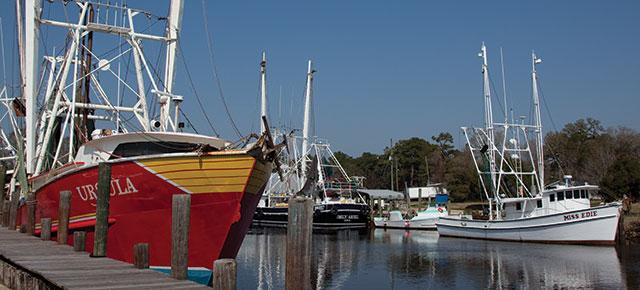 Trips-25-coastal-bayou-la-batre